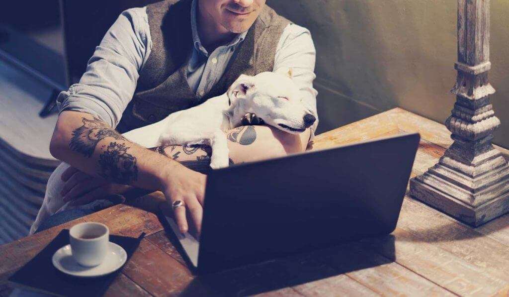 Digital Marketers Guide to Working From Home