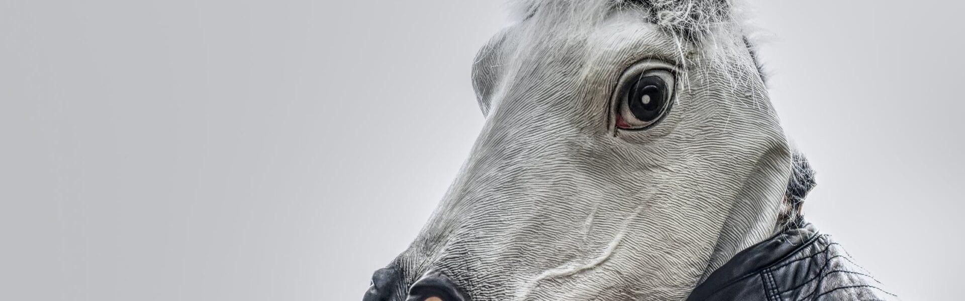 A human wearing a horse head mask