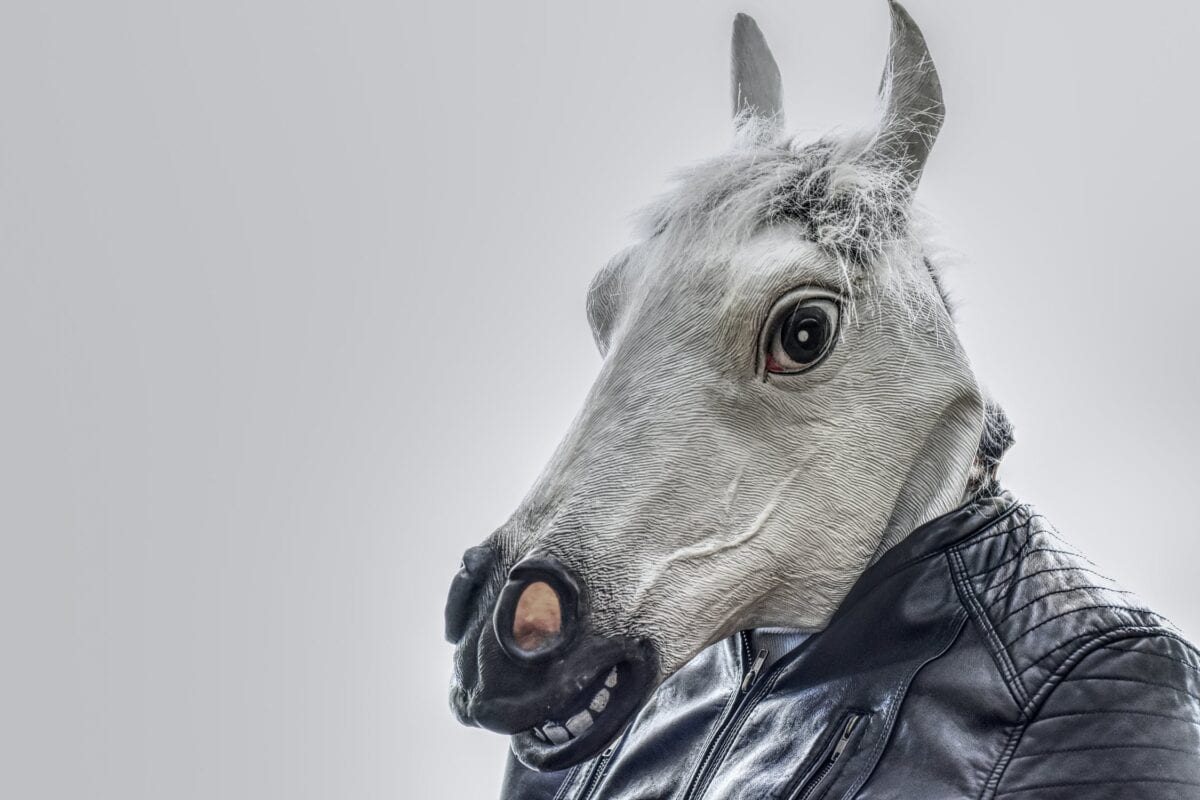 A fake (plastic) horse head on a human body
