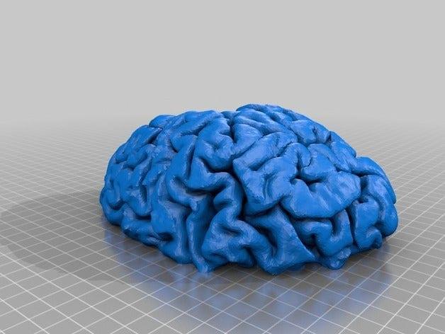 blue brain on a grid